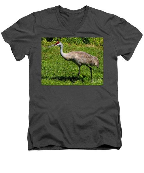 Sand Hill Crane Men's V-Neck T-Shirt