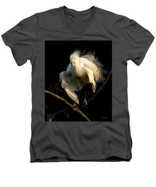 Snowy Beauty Men's V-Neck T-Shirt