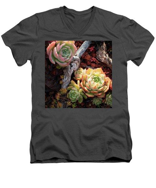 Succulents Men's V-Neck T-Shirt