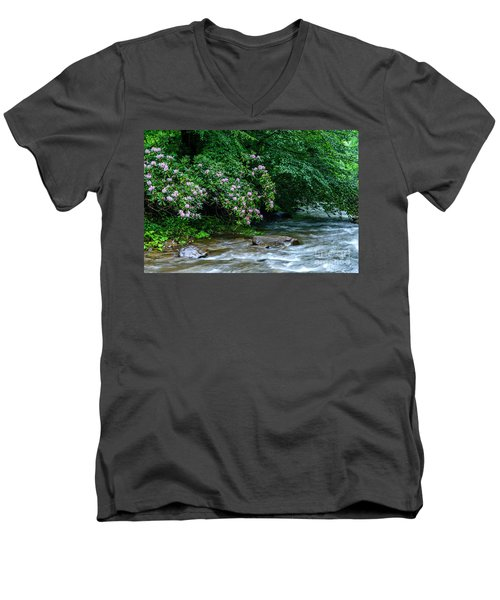 Summer Along Birch River Men's V-Neck T-Shirt