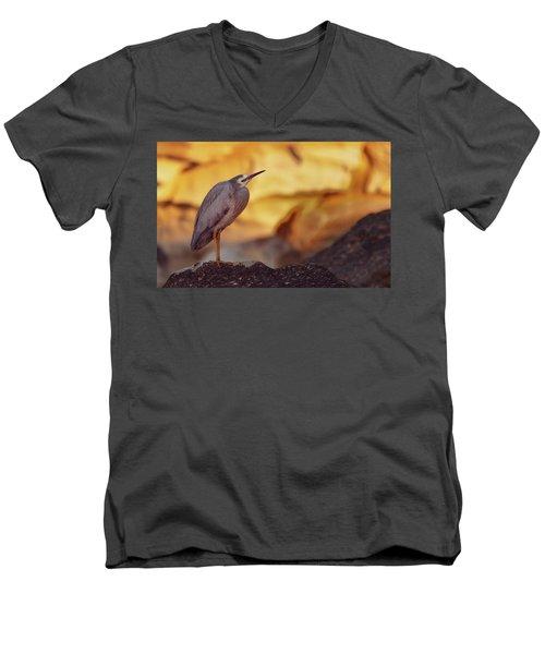 White-faced Heron At The Beach Men's V-Neck T-Shirt