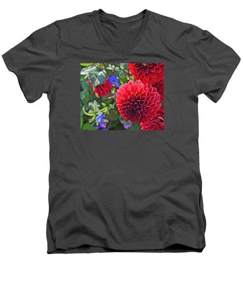 2015 Mid September At The Garden Dahlias 2 Men's V-Neck T-Shirt