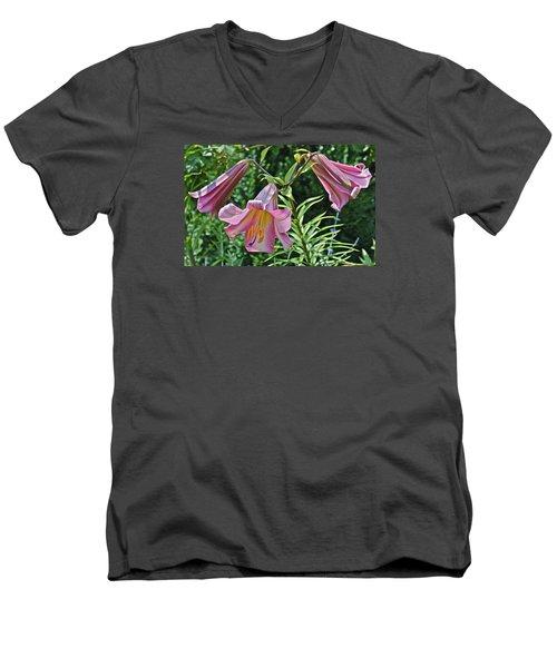 2015 Summer At The Garden Lilies In The Rose Garden 2 Men's V-Neck T-Shirt