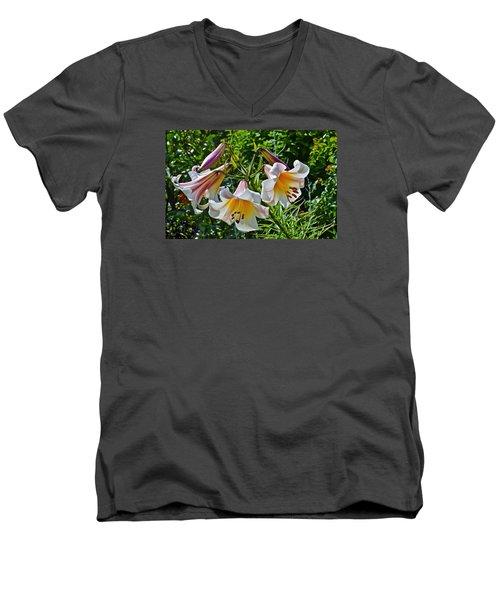 2015 Summer At The Garden Lilies In The Rose Garden 1 Men's V-Neck T-Shirt