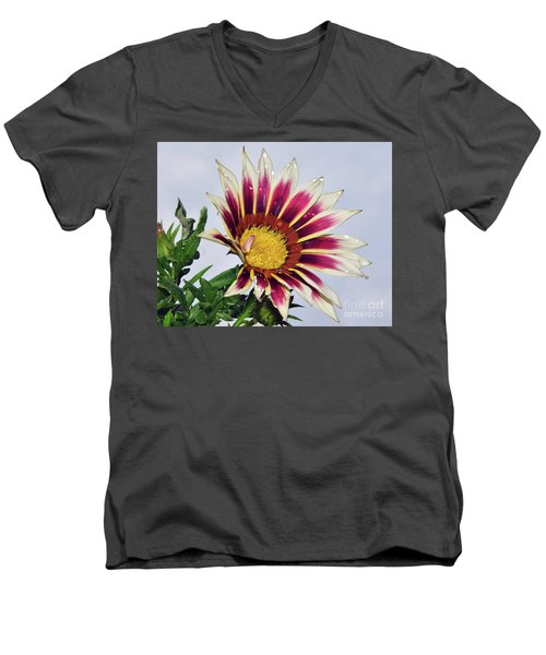 Men's V-Neck T-Shirt featuring the photograph Nice Gazania by Elvira Ladocki