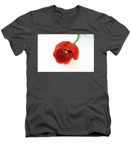 Red Tulip Men's V-Neck T-Shirt by Elvira Ladocki
