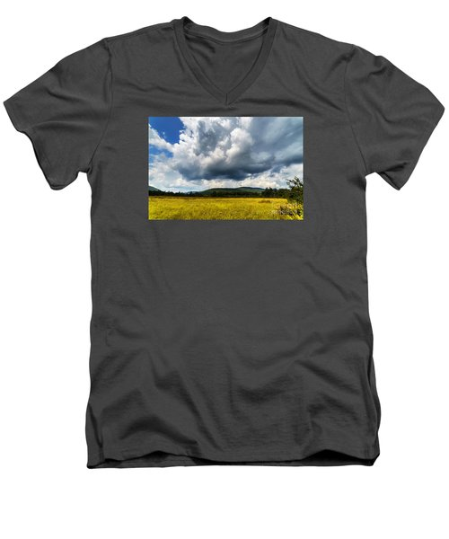 Cranberry Glades Botanical Area Men's V-Neck T-Shirt by Thomas R Fletcher