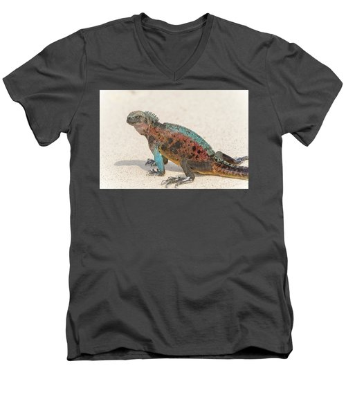Marine Iguana On Galapagos Islands Men's V-Neck T-Shirt by Marek Poplawski