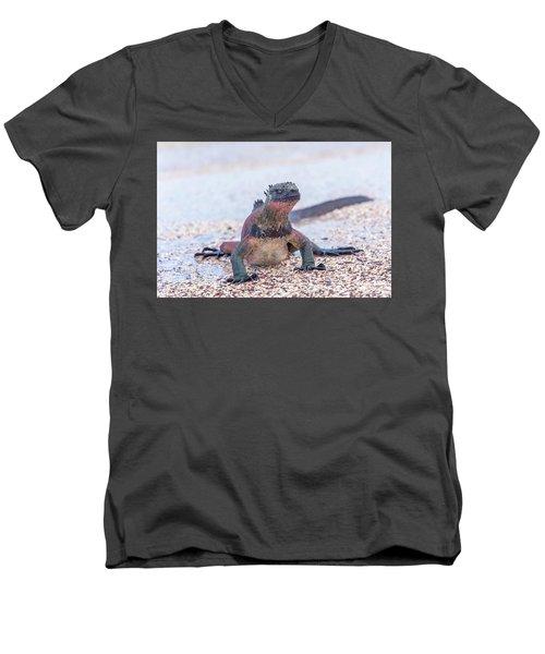 Marine Iguana On Galapagos Islands Men's V-Neck T-Shirt