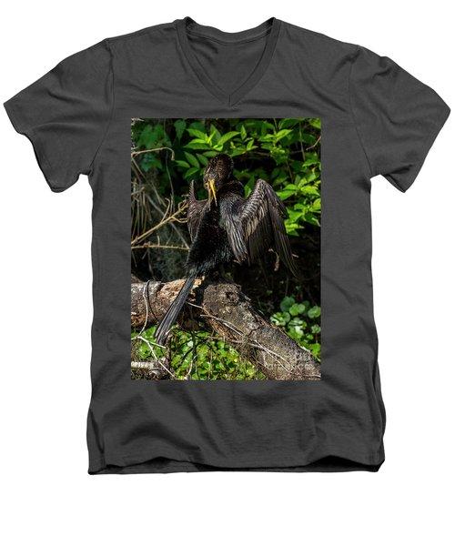 Anhinga Men's V-Neck T-Shirt