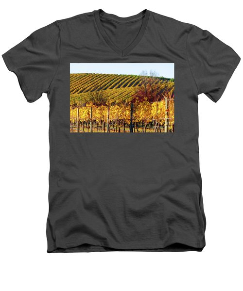 Autumn Vines Men's V-Neck T-Shirt