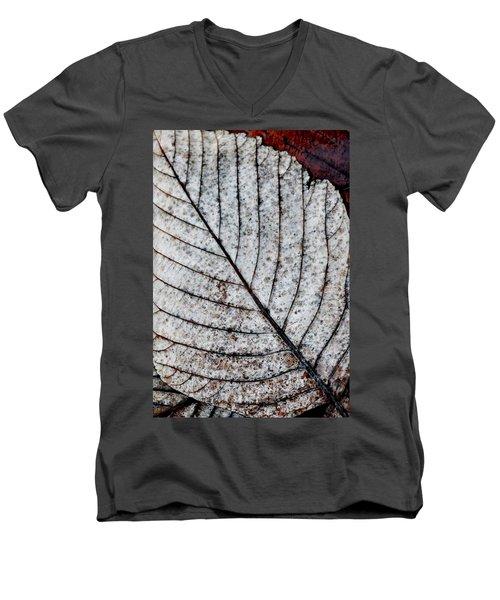 Beautiful Winter Leaf Men's V-Neck T-Shirt