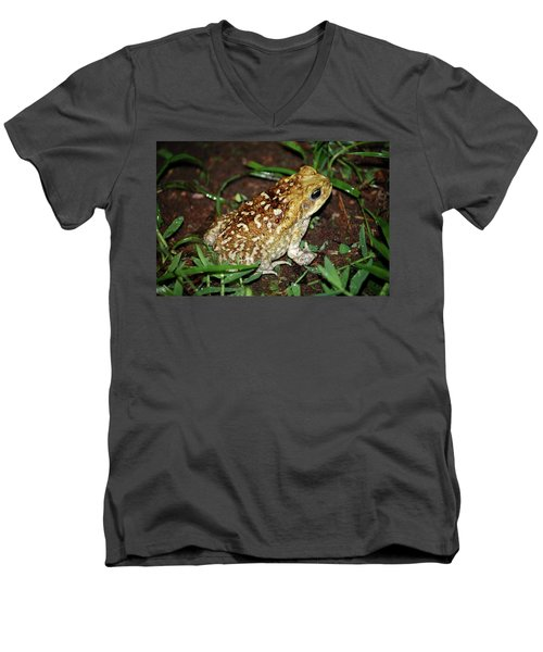 Cane Toad Men's V-Neck T-Shirt