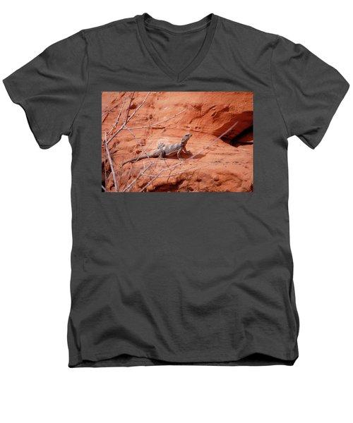 Chuckwalla, Sauromalus Ater Men's V-Neck T-Shirt