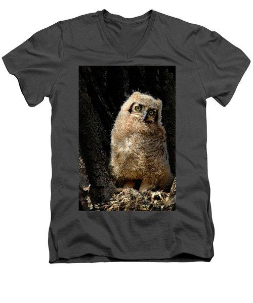 Great Horned Owlet Men's V-Neck T-Shirt