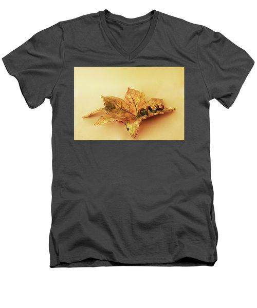 Leaf Plate1 Men's V-Neck T-Shirt by Itzhak Richter