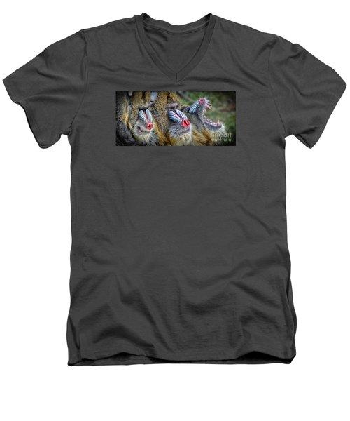 3 Male Mandrills  Men's V-Neck T-Shirt by Jim Fitzpatrick
