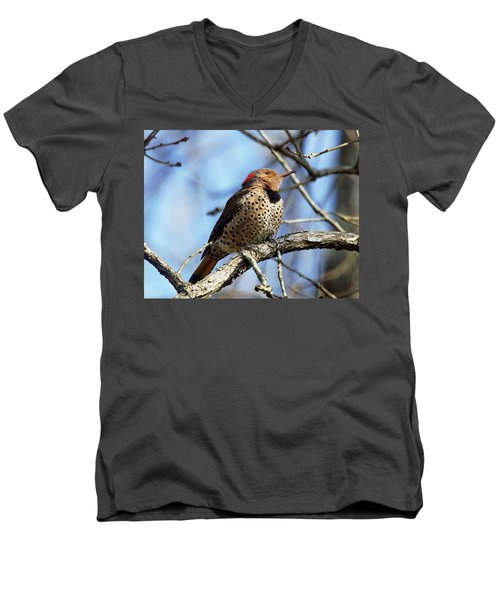 Northern Flicker Woodpecker Men's V-Neck T-Shirt