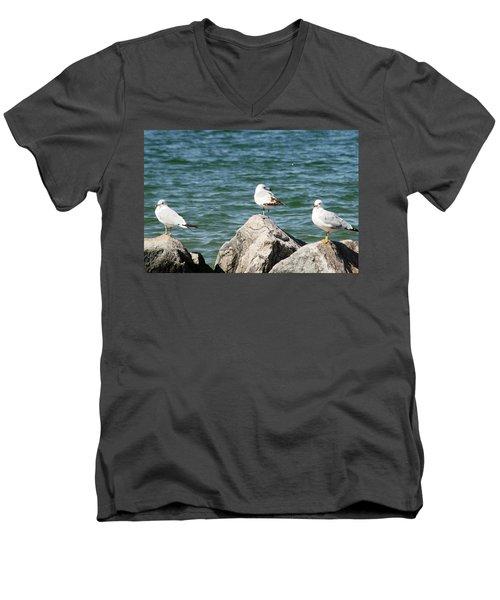 3 Of Them At Sea Men's V-Neck T-Shirt