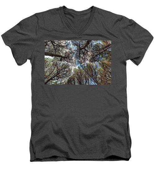 Pinewood Forest, Cecina, Tuscany, Italy Men's V-Neck T-Shirt