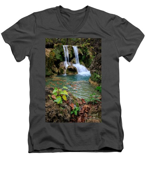 Price Falls In Autumn Color.  Men's V-Neck T-Shirt