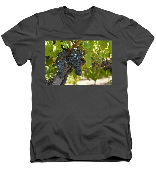 Men's V-Neck T-Shirt featuring the photograph Red Vines by Ulrich Schade