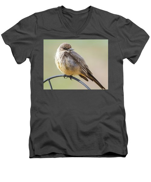 Say's Phoebe Men's V-Neck T-Shirt