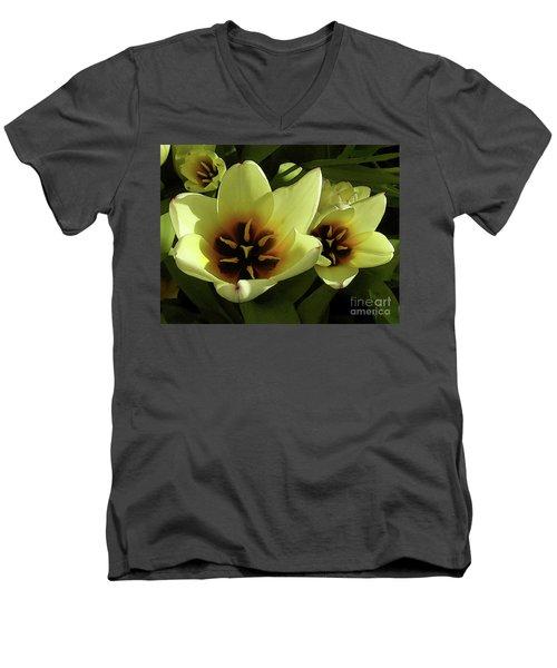 Tulip Lights #4 Men's V-Neck T-Shirt