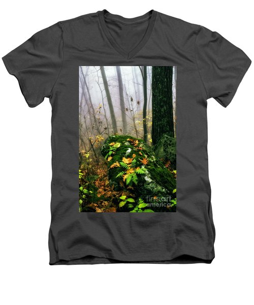 Autumn Monongahela National Forest Men's V-Neck T-Shirt