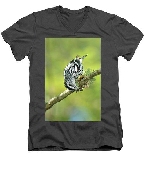 Black And White Warbler Men's V-Neck T-Shirt by Alan Lenk