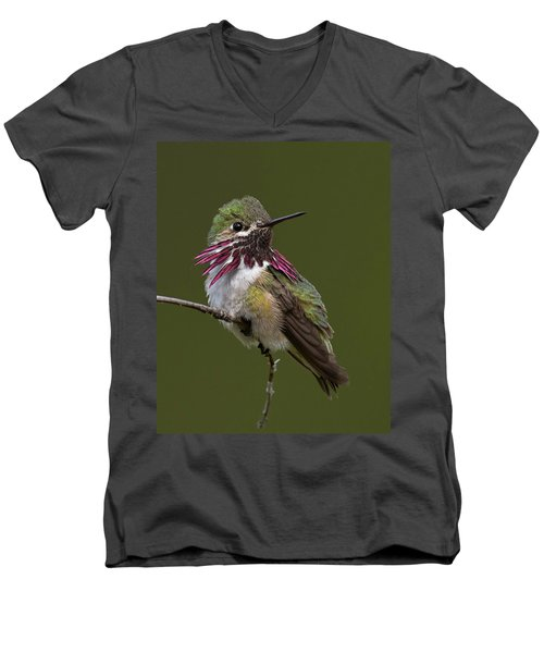 Calliope Hummingbird Men's V-Neck T-Shirt