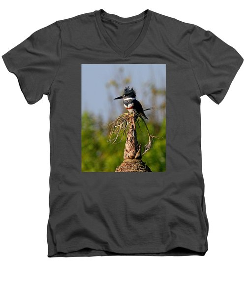 Female Belted Kingfisher Men's V-Neck T-Shirt