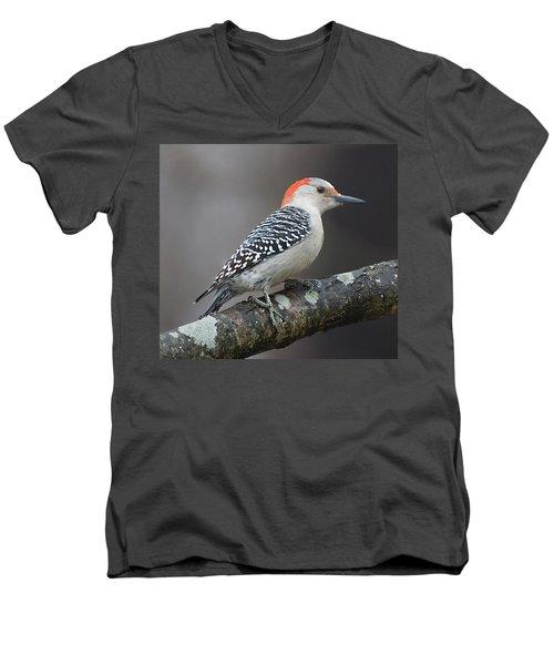 Female Red-bellied Woodpecker Men's V-Neck T-Shirt