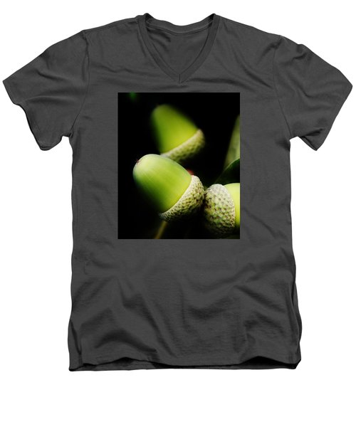 Foliage And Acorns Men's V-Neck T-Shirt by Werner Lehmann