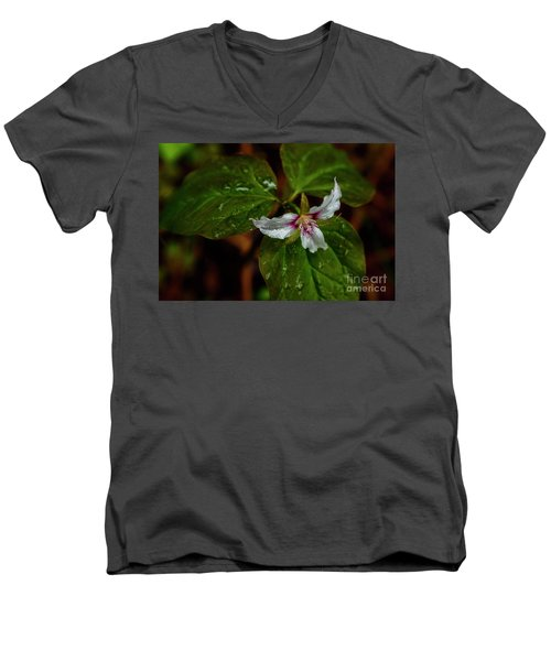 Men's V-Neck T-Shirt featuring the photograph Painted Trillium  by Thomas R Fletcher