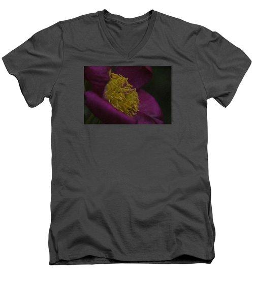 Purple Flower Men's V-Neck T-Shirt by Andre Faubert