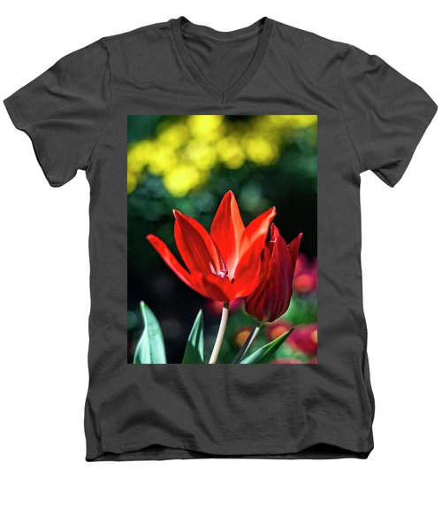 Spring Garden Men's V-Neck T-Shirt by Miguel Winterpacht