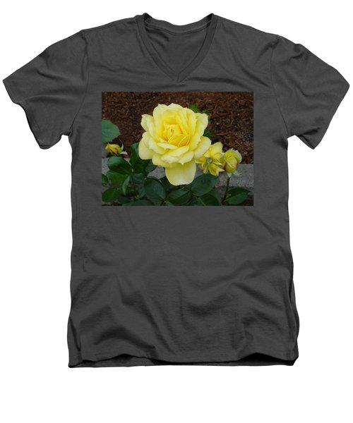 4 Yellow Roses Men's V-Neck T-Shirt
