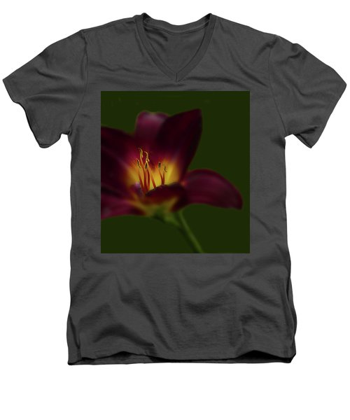 Men's V-Neck T-Shirt featuring the photograph 4479 by Peter Holme III