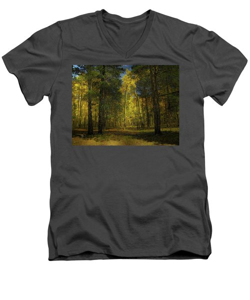 Men's V-Neck T-Shirt featuring the photograph 4508 by Peter Holme III
