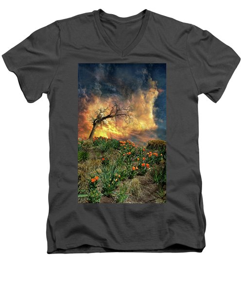 Men's V-Neck T-Shirt featuring the photograph 4509 by Peter Holme III