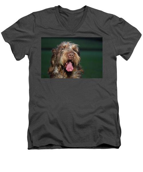 Brown Roan Italian Spinone Dog Head Shot Men's V-Neck T-Shirt