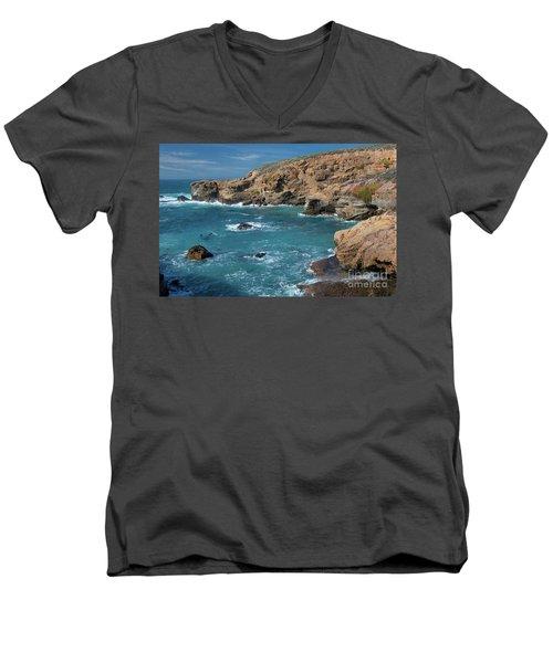 Point Lobos Men's V-Neck T-Shirt