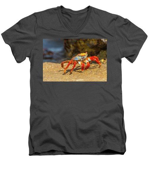Sally Lightfoot Crab On Galapagos Islands Men's V-Neck T-Shirt
