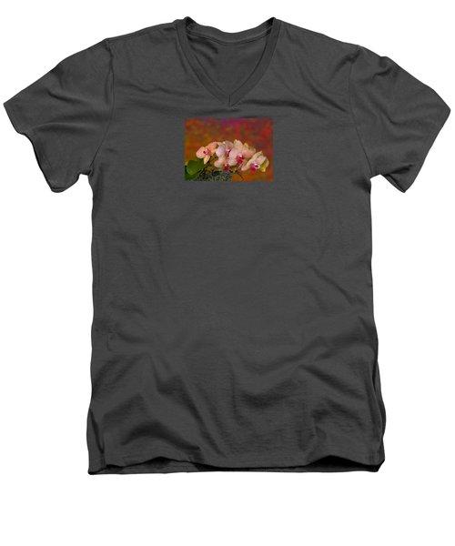 4117 Men's V-Neck T-Shirt by Peter Holme III