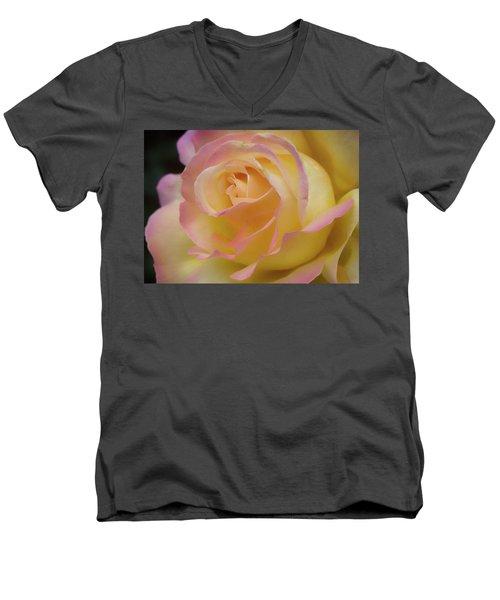 Rose Beauty Men's V-Neck T-Shirt by Shirley Mitchell