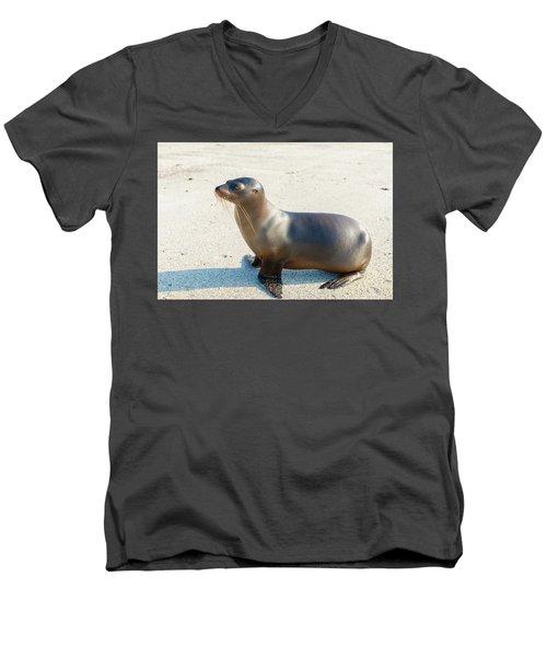Sea Lion In Galapagos Islands Men's V-Neck T-Shirt by Marek Poplawski
