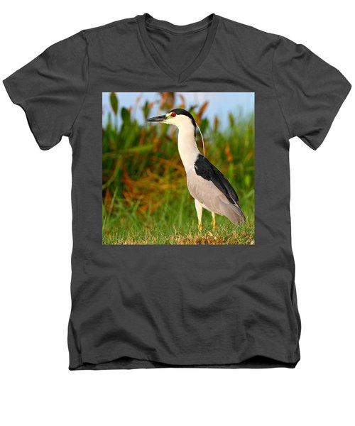 Black Crowned Night Heron Men's V-Neck T-Shirt