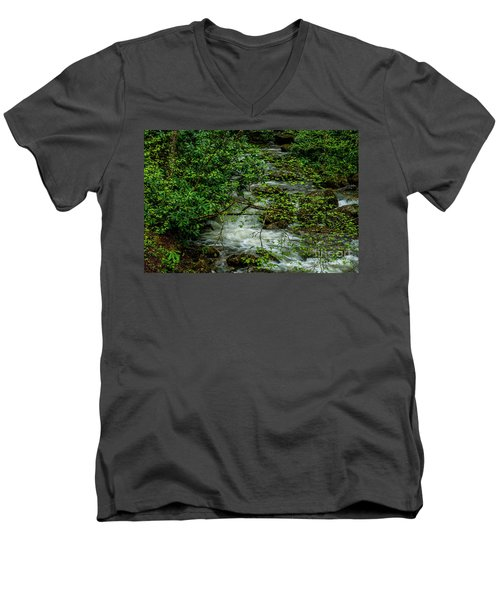 Men's V-Neck T-Shirt featuring the photograph Kens Creek Cranberry Wilderness by Thomas R Fletcher