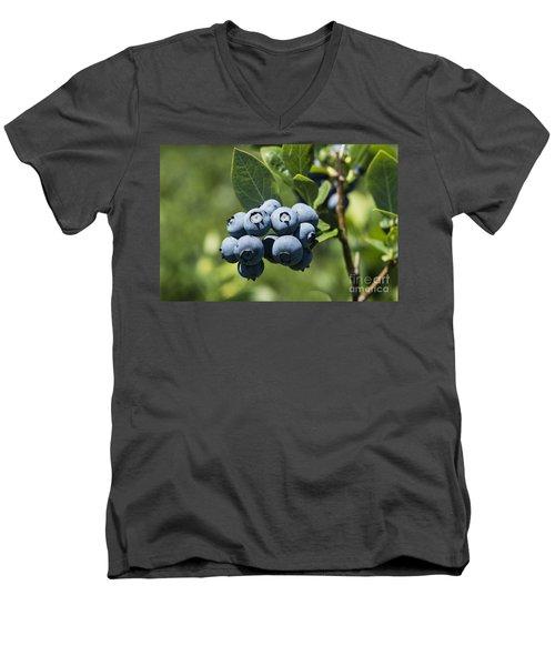 Blueberry Bush Men's V-Neck T-Shirt